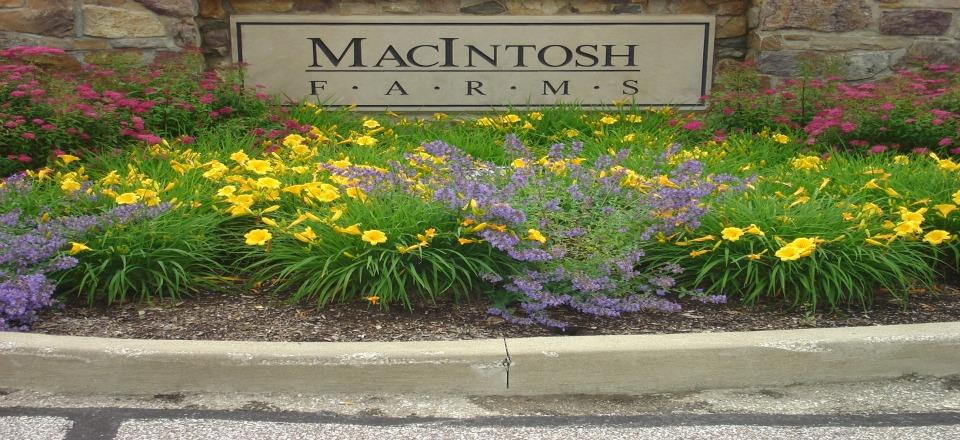 Macintosh Farms Homes for Sale