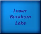 Lower Buckhorn Lake - Kawartha Lakes Real Estate - Waterfront Homes and Cottages - Lake Facts
