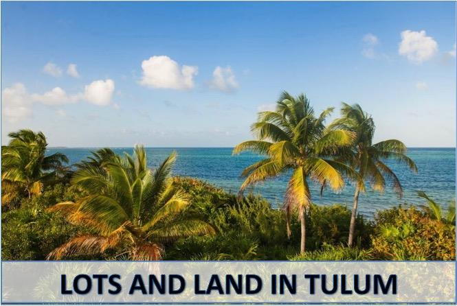 Tulum_mexico_real_estate_moskito_lots_and_land
