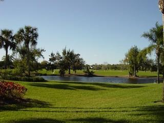 Imperial Golf Estates Naples Fl golf course