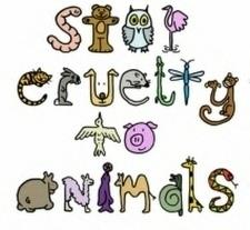 Stop Cruelty To Animals by Dap5014.