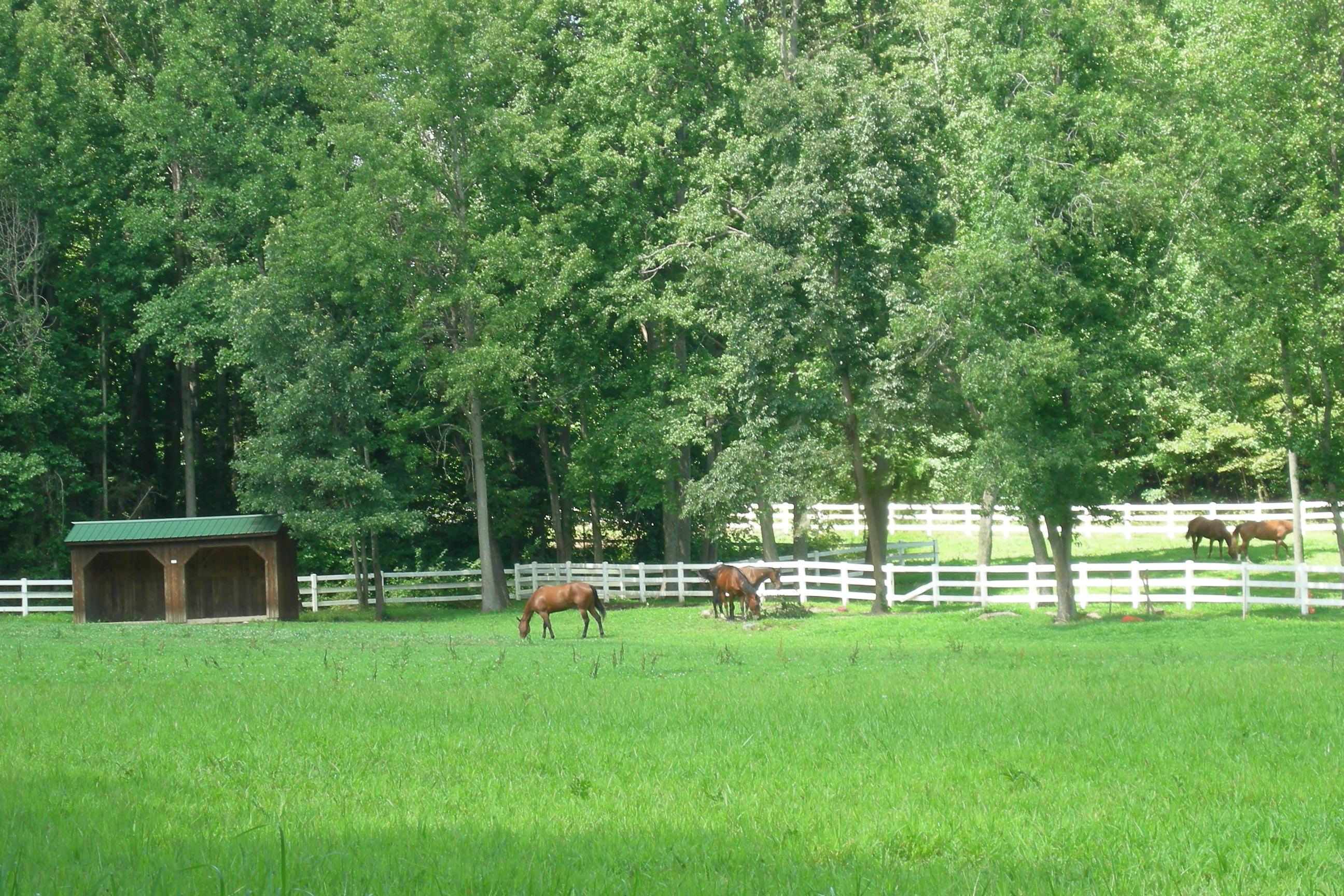 Garrett's Chance is a horse friendly community located in a country setting with a convenient location to employment and shopping.  Come live your equestrian lifestyle, at Garrett's Chance, and bring your horses!  Gorgeous 3-15 acre sites located just south of Brandywine and just outside of Hughesviille.  Garrett's Chance is a quality new homes community by K&P Builders of Maryland, Brokered by Marie Lally, O'Brien Realty of Southern Maryland