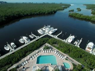 Pelican Isle Naples Fl pool view