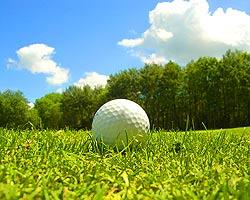Golfing In Brantford Ontario