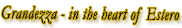 Grandezza Single Family and Coach Carriage Homes for Sale, Estero, Florida