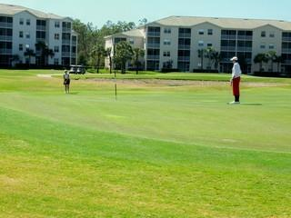 Forest Glen Naples Fl golf course
