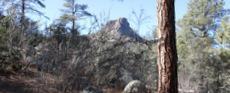 Idywild Prescott AZ