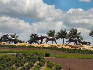 Lely Resort Naples Fl community entrance