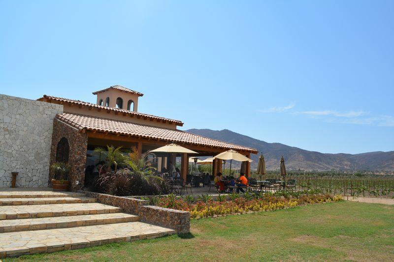 Wine Country in Ensenada