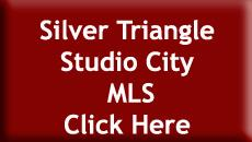 Silver Triangle Homes For Sale