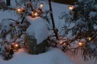 dp1-snowlights