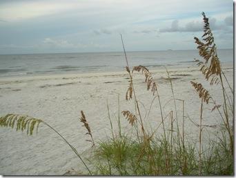 BIenvennue les Francophones a Fort Myers Beach 2009-2010