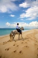 Horse Trails in Comporta Alentejo Portugal