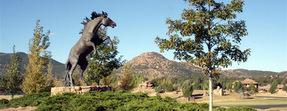 American Ranch Prescott Arizona