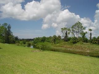 Horse Creek Estates Naples Fl neighborhood view