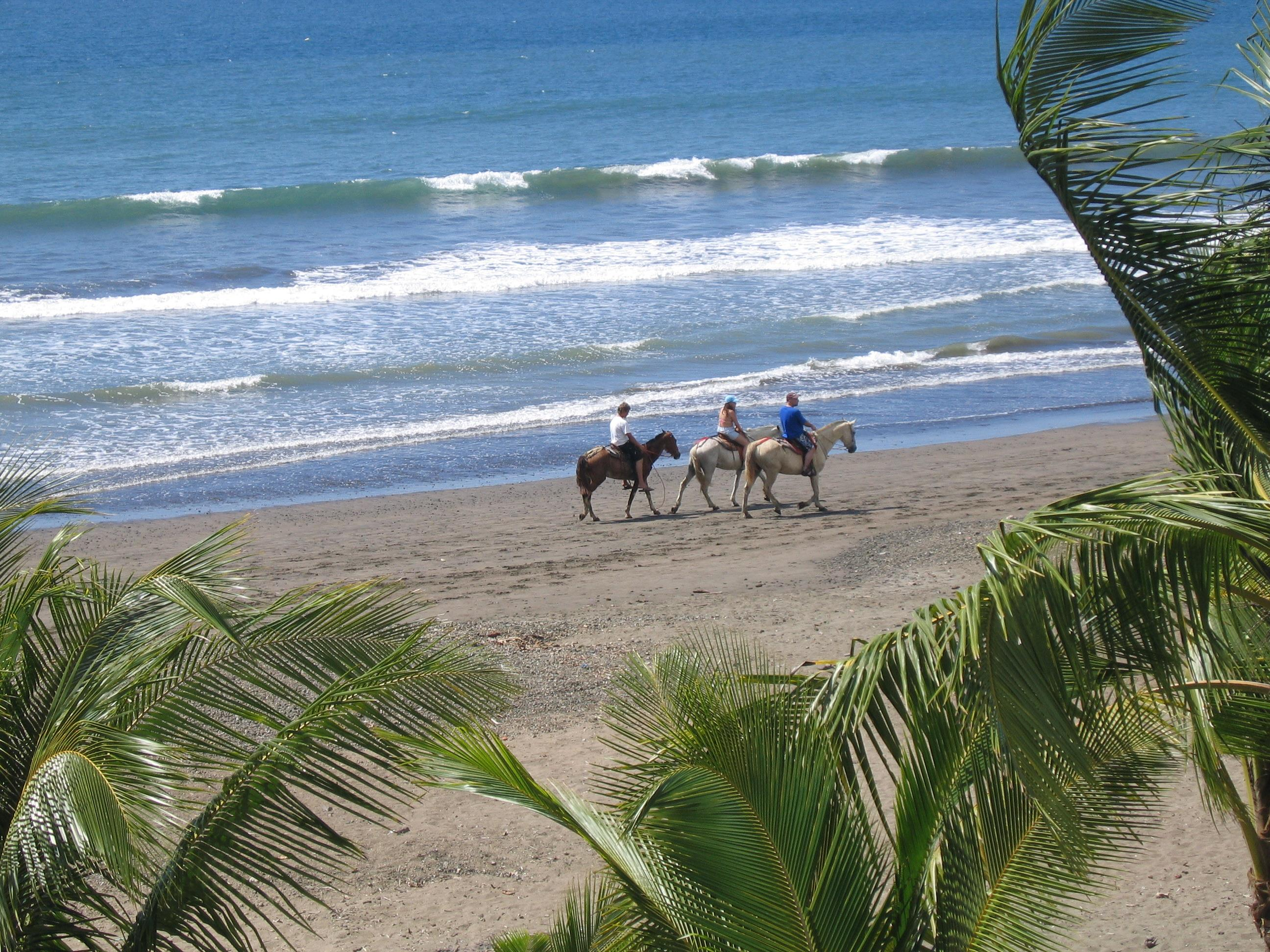Horses on Jaco Beach Costa Rica