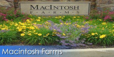 Macintosh Farms Real Estate