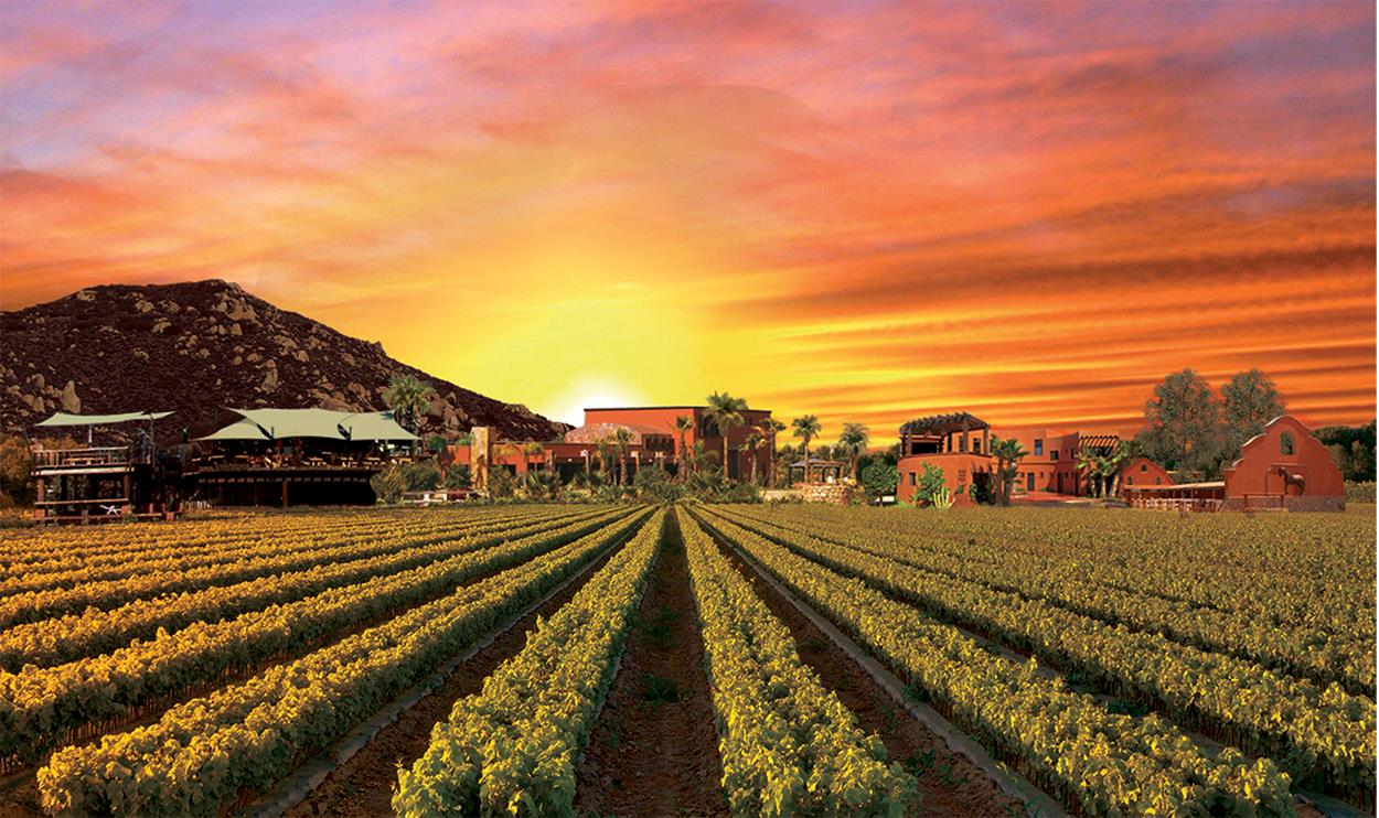 Buy a home in Valle de Guadalupe, Land for sale in Guadalupe Valley, Ranch for Sale in Guadalupe Valley