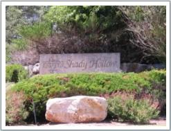 Estates of Shady Hollow sign