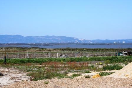 Carrasqueira views to the Sado Estuary and Serra da Arrabida