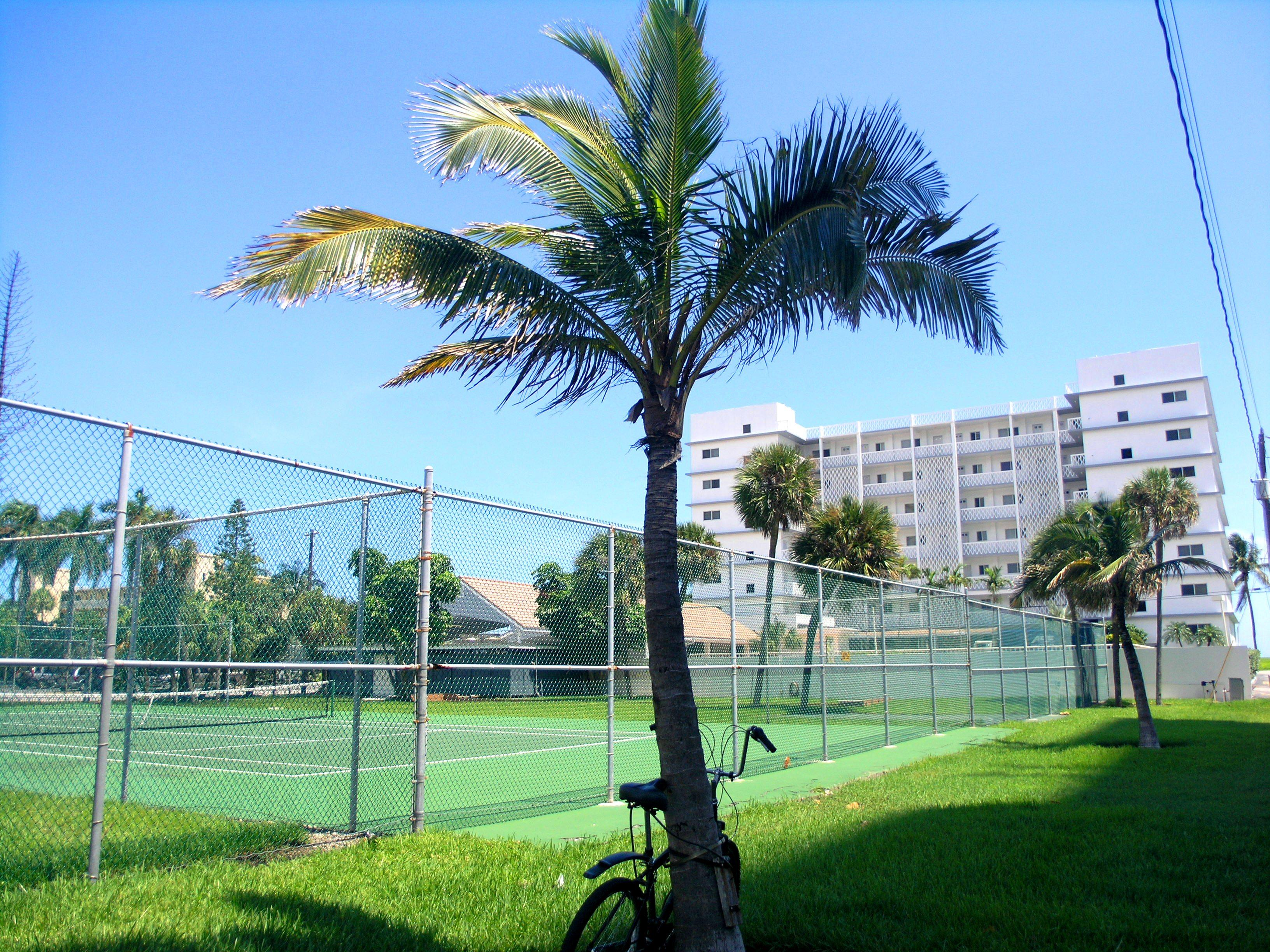 Mariposa Tennis Courts