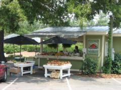 Produce Stand in Stallings