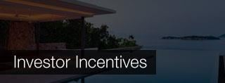 Investor Incentives