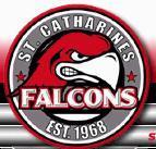 The current Junior B Falcons logo