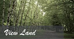 View Land
