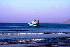 Fishing off the Atlantic Coast in Comporta Alentejo