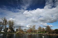 Springfield Oregon Real Estate, Homes and Lifestyle