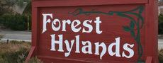 Forest Hylands homes for sale Prescott AZ