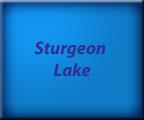 Sturgeon Lake - Kawartha Lakes Real Estate - Waterfront Homes and Cottages - Lake Facts