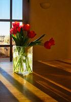 Flowers can transform a home