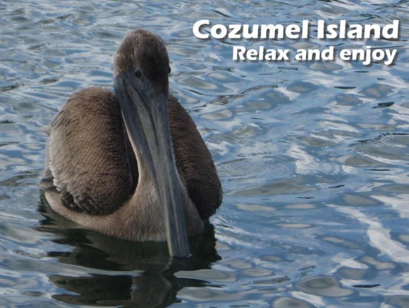 Cozumel relax