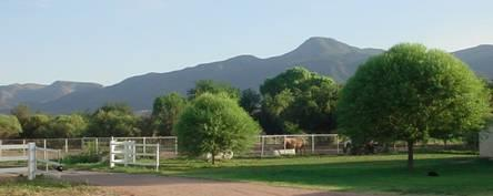 Camp Verde Real Estate turns gorgeous shades of green….