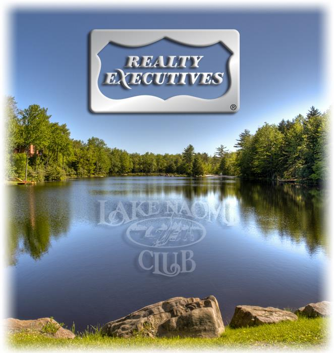 Realty Executives in Lake Naomi and Timber Trails