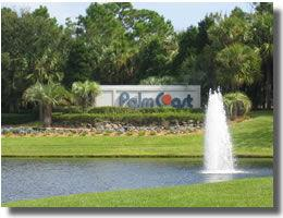 Palm Coast Florida Real Estate