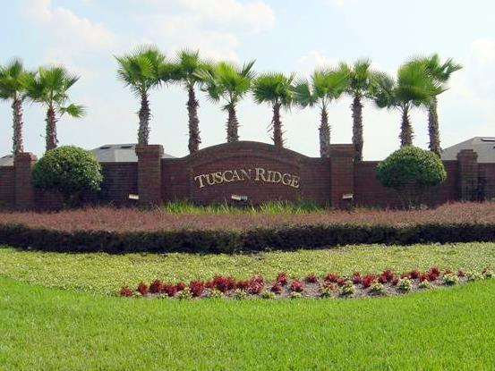 Tuscan Ridge Davenport Homes for Sale