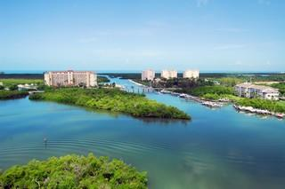 Cove Towers Naples Fl aerial