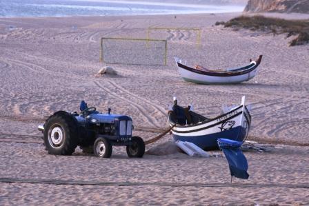 Fishing in Aldeia do Meco