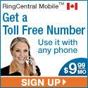 Get Your Own Business Toll Free Number