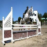 REAL DEL MAR HORSE RIDING