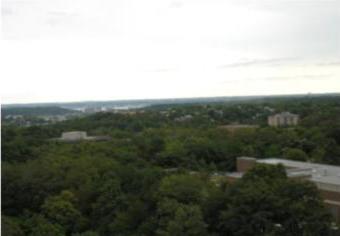 Skyline House View