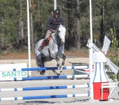 Professional Horse Jumping Portugal