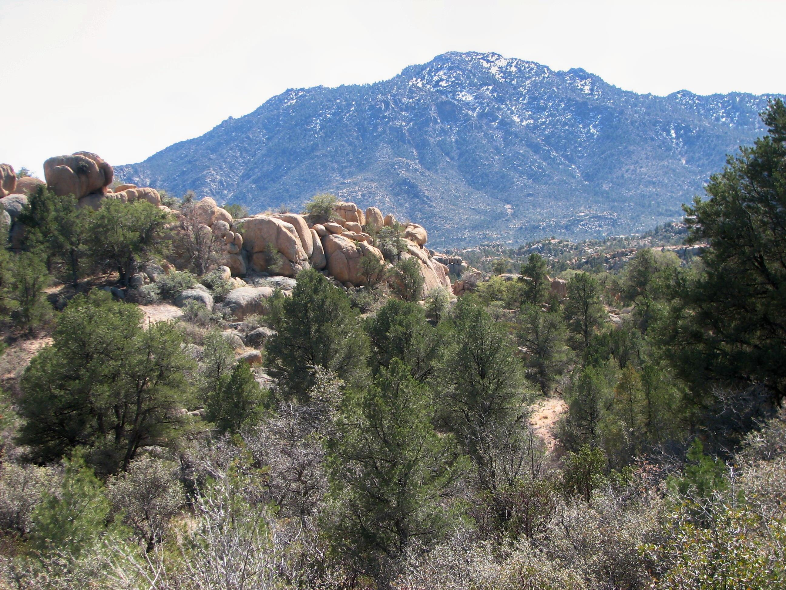 American Ranch Homes for Sale