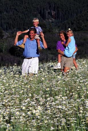 Family hike through the flowers on Buffalo Pass