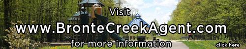 bronte creek homes for sale brontecreekagent.com