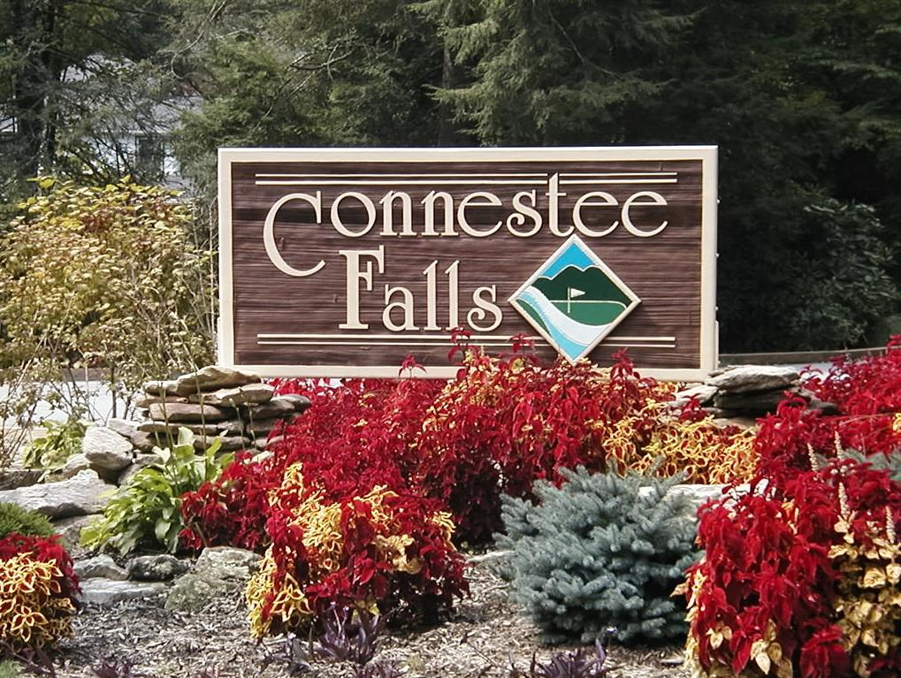 Connestee Falls Real Estate