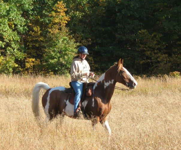 West Michigan Horse Properties